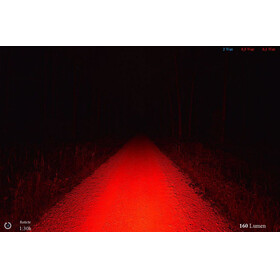 Lupine Luz roja - Luces para bicicleta - blanco/negro